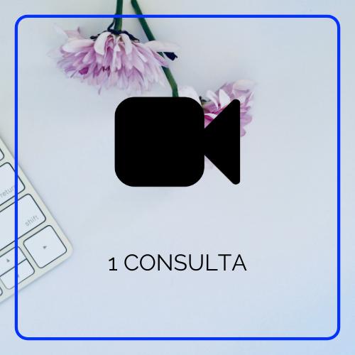 1 consulta por videoconferencia