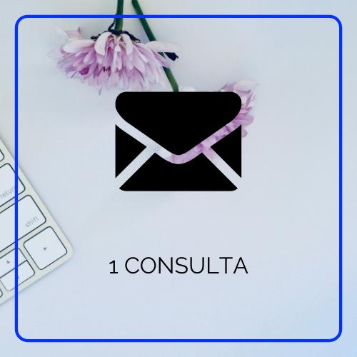 1 consulta por email