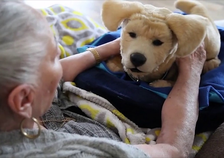alzheimer mascotas robots demencia