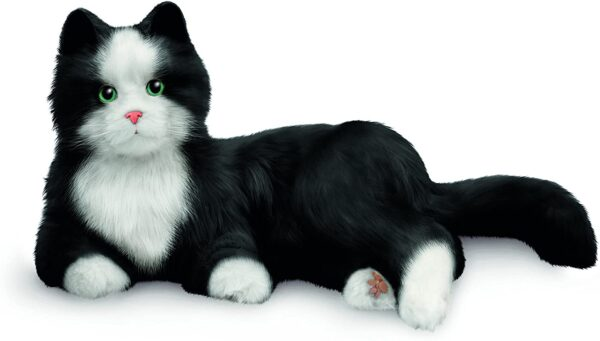 gato robot alzheimer esmoquin